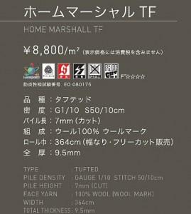 f-2013.5.17.17