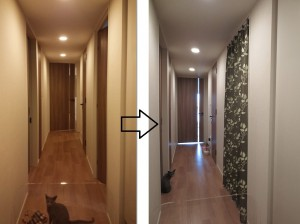 廊下 間仕切 カーテン ペット