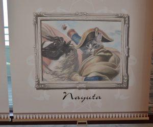 猫 ナポレオン